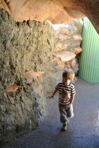 Honey I Shrunk The Kids Playground