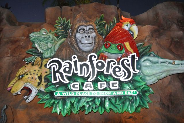 Downtown Disney Rainforest Cafe