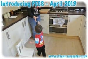 Introducing PECS