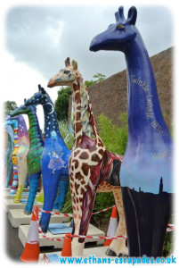 Colchester Zoo Stand Tall Farewell Tour
