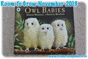 Room To Grow Bookshare Scheme - Owl Babies