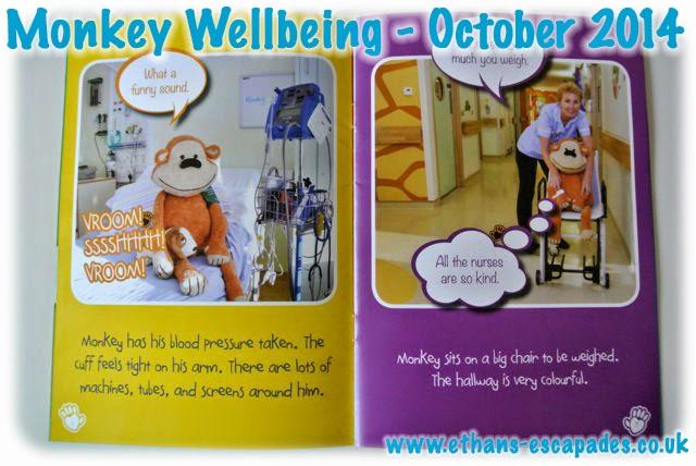 Monkey Wellbeing - Monkey Has An Operation
