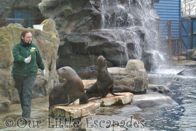 Zoo_24