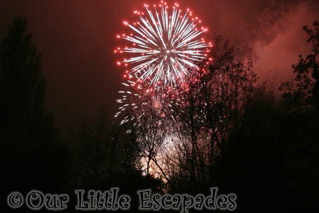 Fireworks2015_2