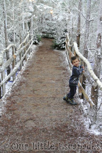 ethan woodland snowy path