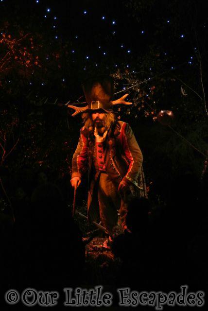 woodland elf welcome to lapland uk