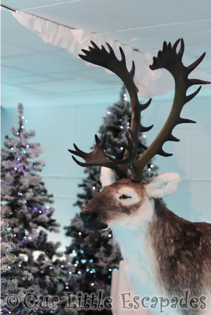st johns clacton santa express reindeer christmas wonderland