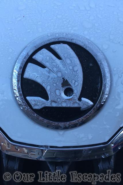 skoda bagde white car