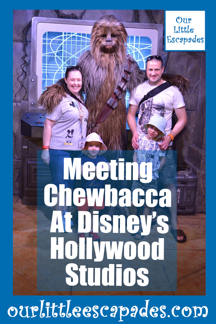meeting chewbacca disneys hollywood studios walt disney world
