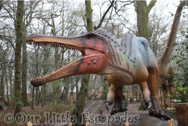 world of dinosaurs baryonyx paradise wildlife park