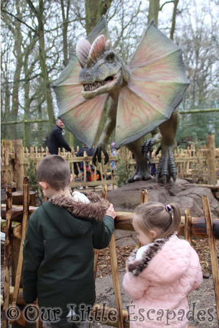 world of dinosaurs dilophosaurus paradise wildlife park
