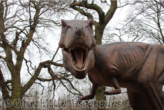 tryannosaurus rex