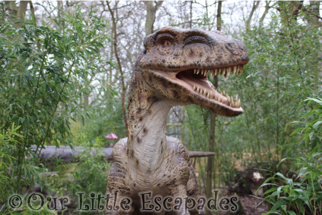 world of dinosaurs velociraptor paradise wildlife park