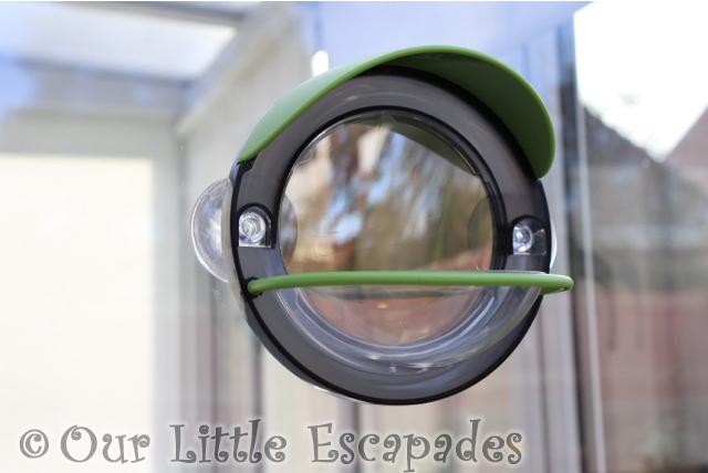 window bird feeder front