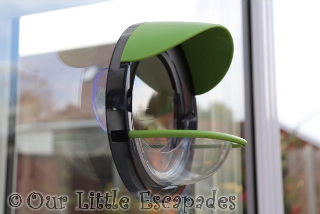 window bird feeder side