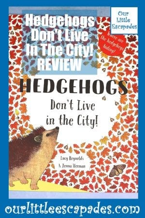 Hedgehogs Dont Live In The City REVIEW