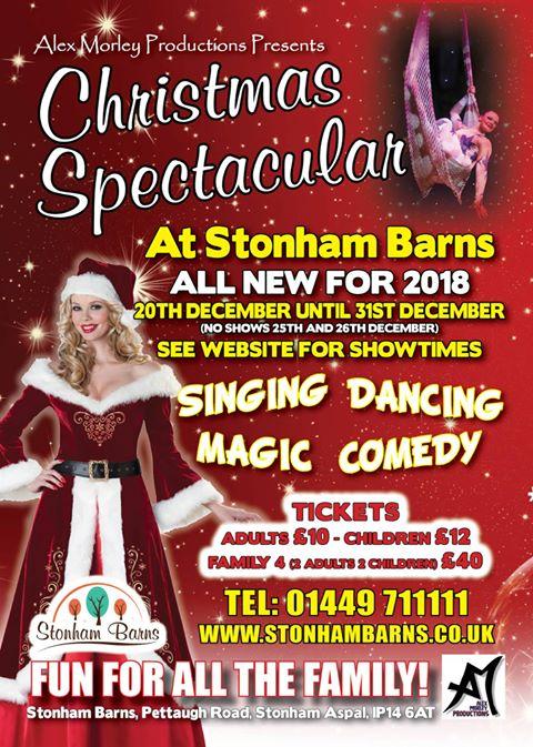 christmas spectacular show stonham barns suffolk