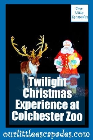 Twilight Christmas Experience Colchester Zoo