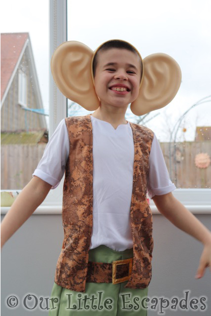 bfg roald dahl world book day costume