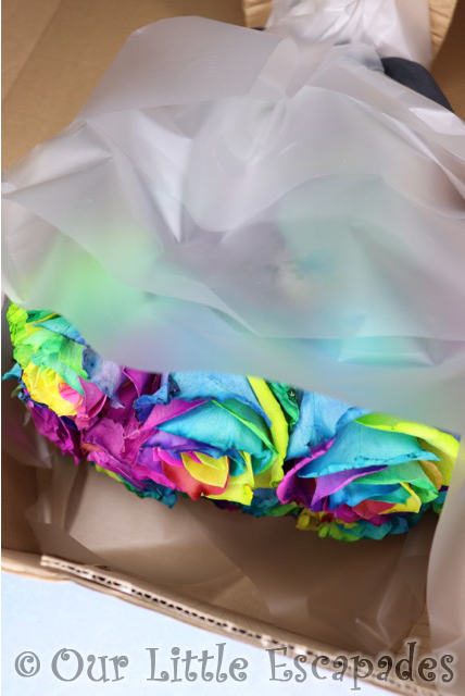 rainbow roses blossoming gifts delivery box open