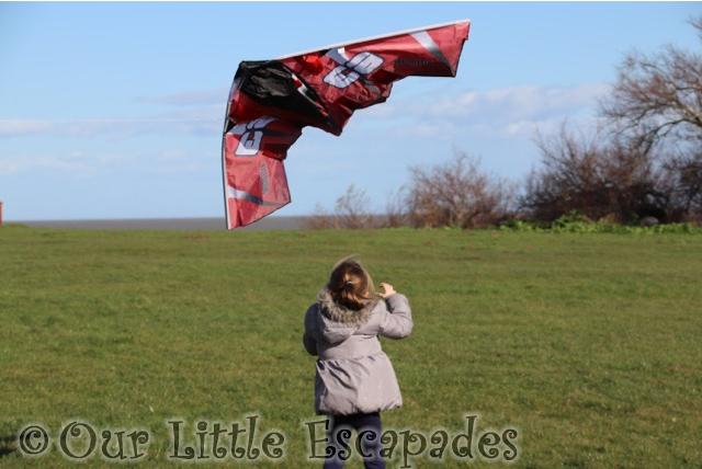 kite flying little e