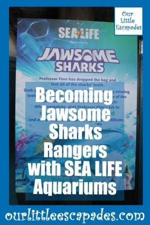 Becoming Jawsome Sharks Rangers with SEA LIFE Aquariums