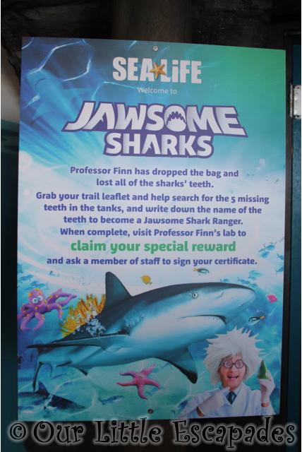 jawsome sharks sea life poster