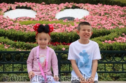 mickey mouse flowers disneyland hotel paris ethan little e