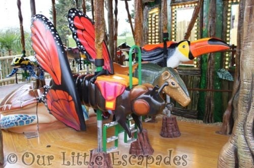 monarch butterfly giant armadillo toucan rainforest carousel drusillas park