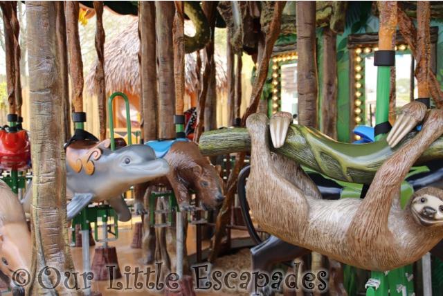 orinoco dolphin carybara two toed sloth