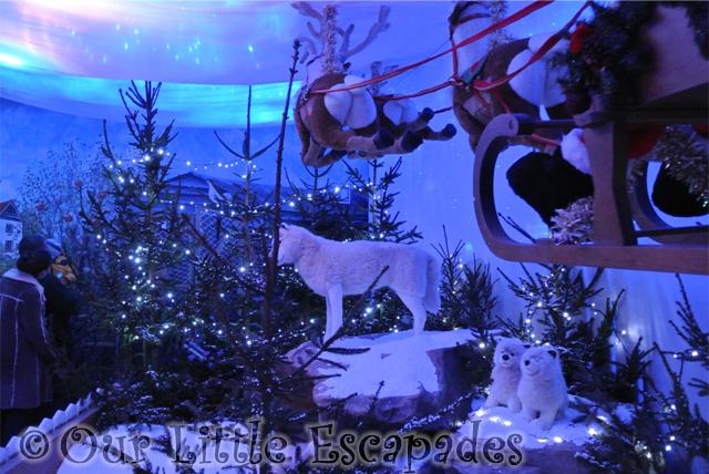 huskies colchester zoo christmas grotto
