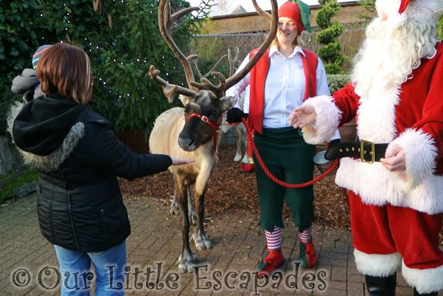 jane ethan feeding reindeer breakfast with santa colchester zoo