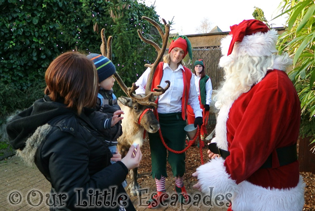 jane ethan santa reindeer breakfast with santa colchester zoo