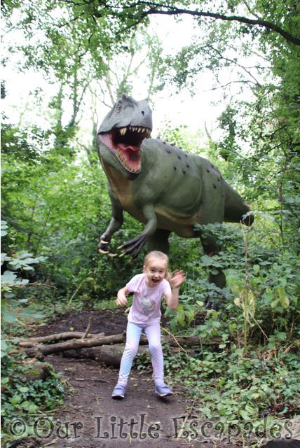 little e dinosaur forest