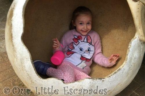 little e egg shell