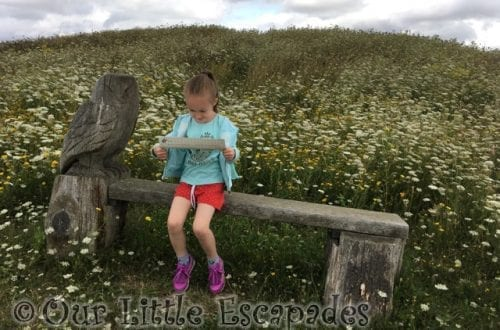 little e map reading abberton reservoir owl bench