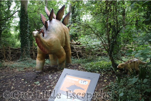 stegosaurus dinosaur forest port lympne