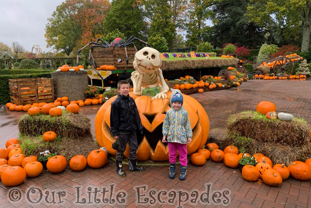 little e ethan halloween pumpkins paultons park peppa pig world