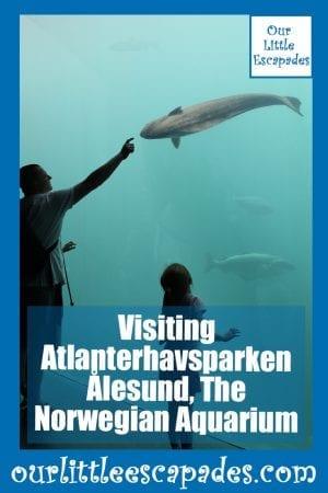 Visiting Atlanterhavsparken Alesund The Norwegian Aquarium