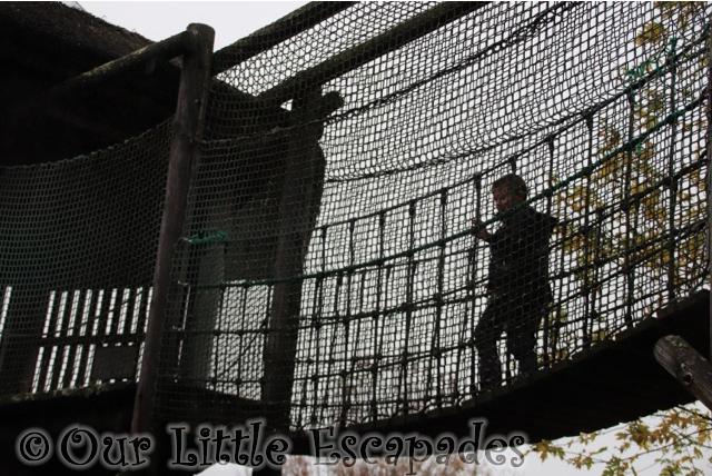 ethan climbing great ape play area