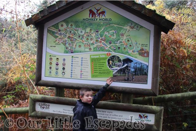 ethan map monkey world dorset