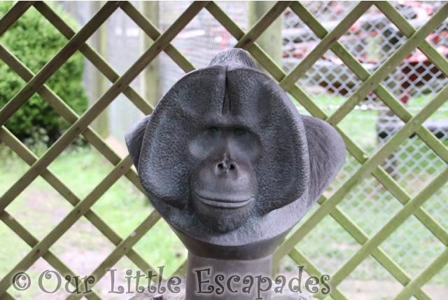 orangutan sensory stature