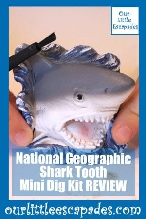 National Geographic Shark Tooth Mini Dig Kit REVIEW