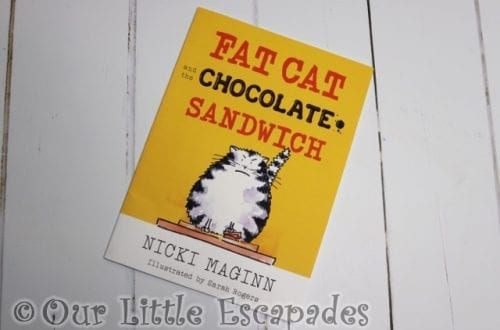 fat cat and the chocolate sandwich