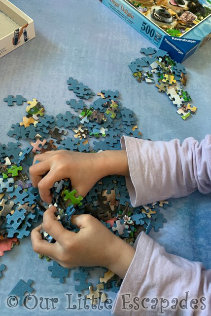 little e puzzle piece sorting